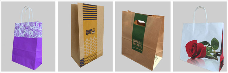 LSB Paper Bag Making Machine Sample bag